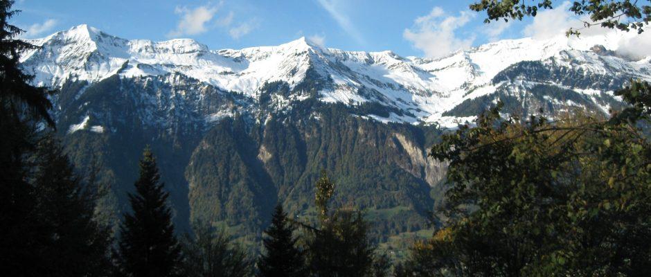 gwand-forest-321761_1920